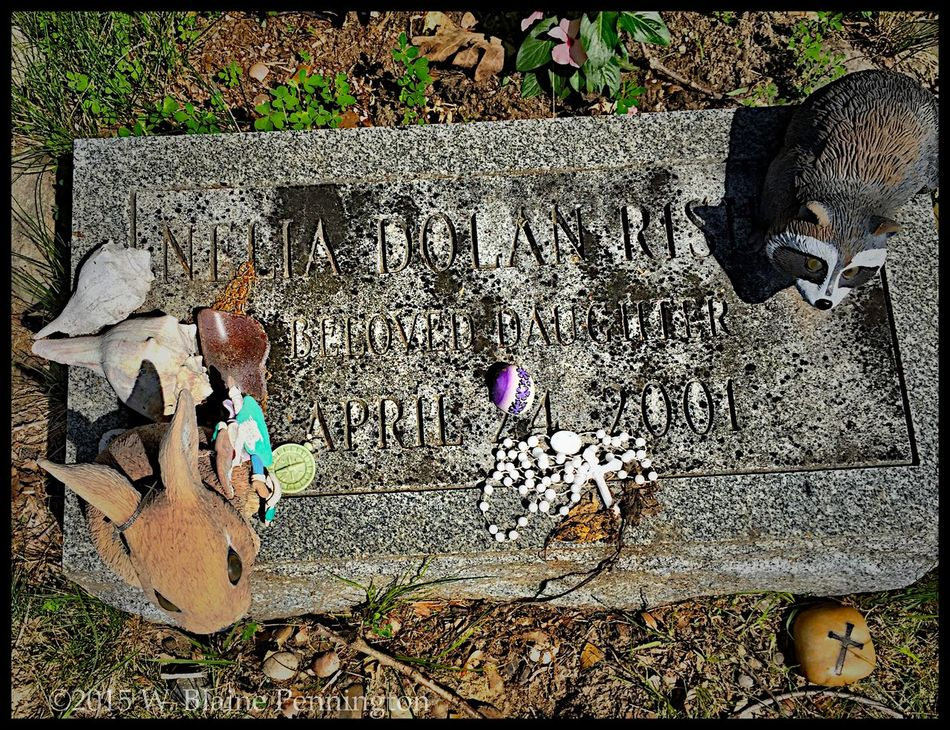 Sweet tribute for a hard loss... Cemetery Series Beach