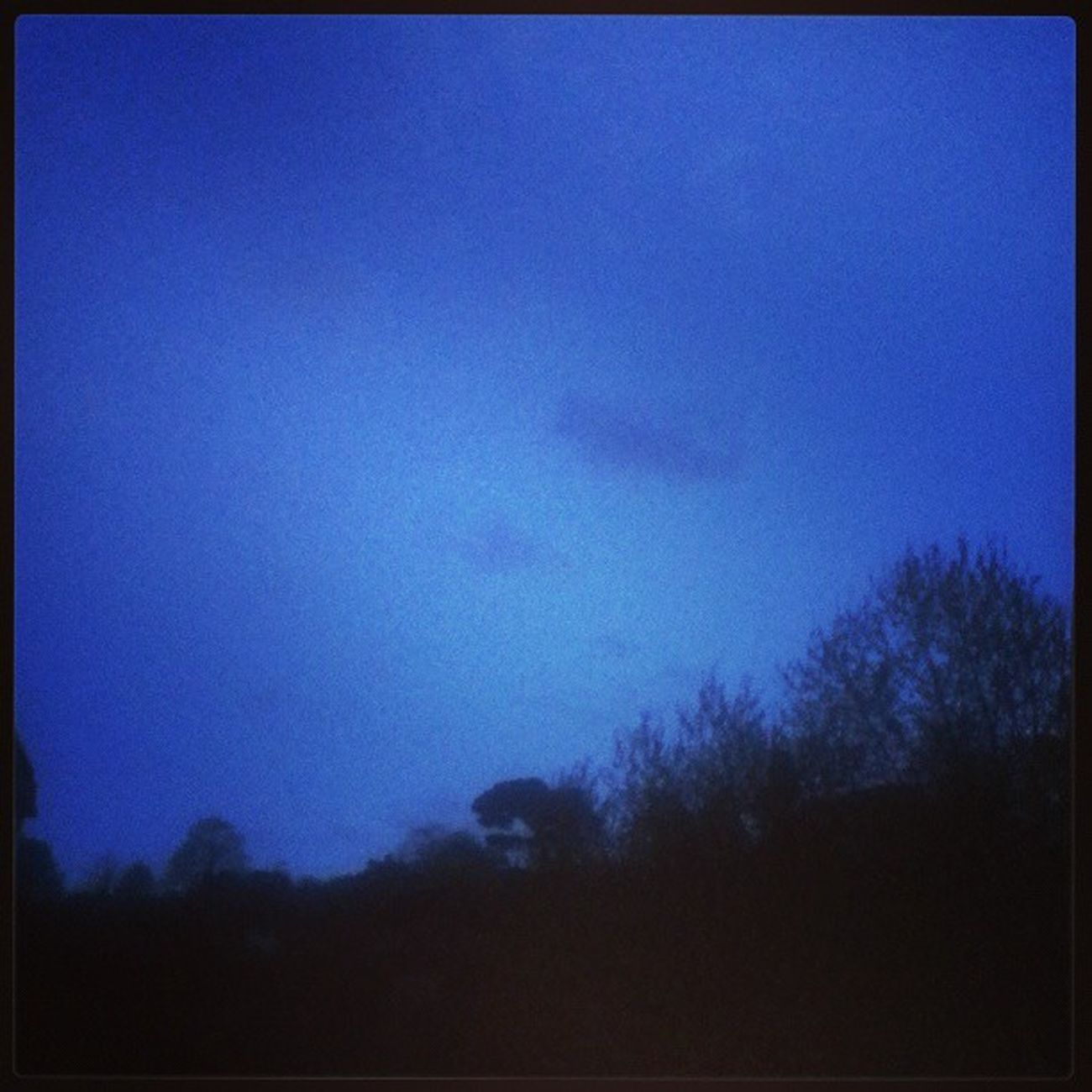 Bir bahar aksami gokyuzu ve dinazor agacim;) Istanbul Instaturk Sky Instamood Ig Igersturkiye Igmasters Ig_captures Instagramers Instahappy Instagramhub Night