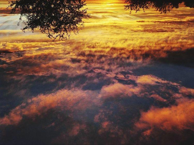 Sunset_collection Sunset Sky Skyonfire Cloud - Sky Clouds Clouds And Sky Cloud_collection