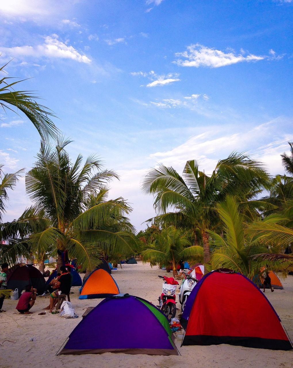 tent, adventure, recreation, camping, shelter, sky, enjoyment, nature, tree, environment, landscape, beach, blue sky, beauty in nature, friendship, scenery, people, outdoors