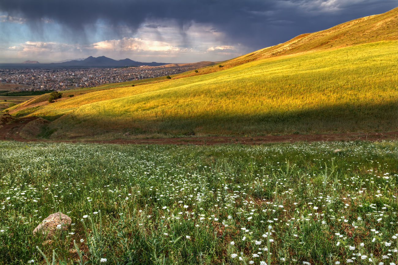 Landscape Landscape_photography View Of City Urmia Mountain Spring Flowers Mojtaba Esmaeilzad