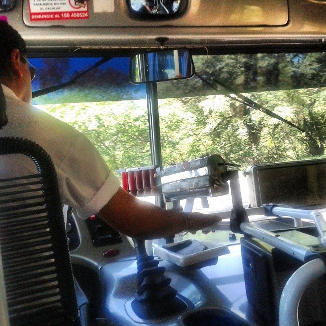 Nos vamos a la selvaaaaaaaa - Selva 118 Bus Colectivo Colectivos Bosque Montaña Mountain Crazy ConLosHuevosEnLaGarganta