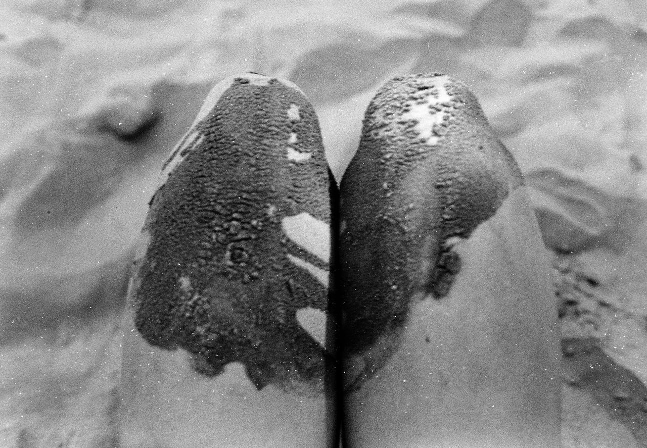 The Island Analog Analogue Photography Baltic Baltic Sea Beach Blackandwhite Close-up Day High Angle View Human Body Part Human Leg Indoors  Low Section One Person People People Photography Real People Sand She Womanity  Women