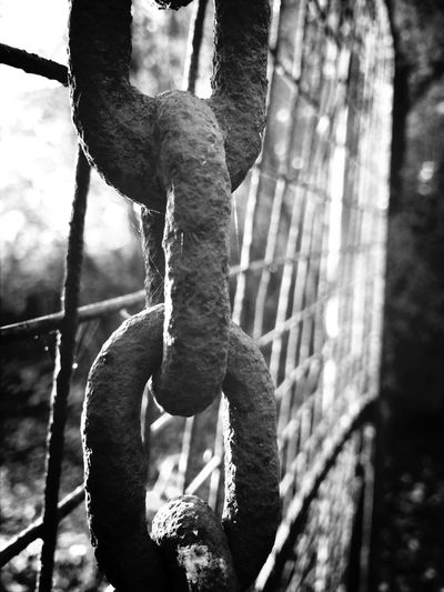 Corrosion Blackandwhite IPhoneography