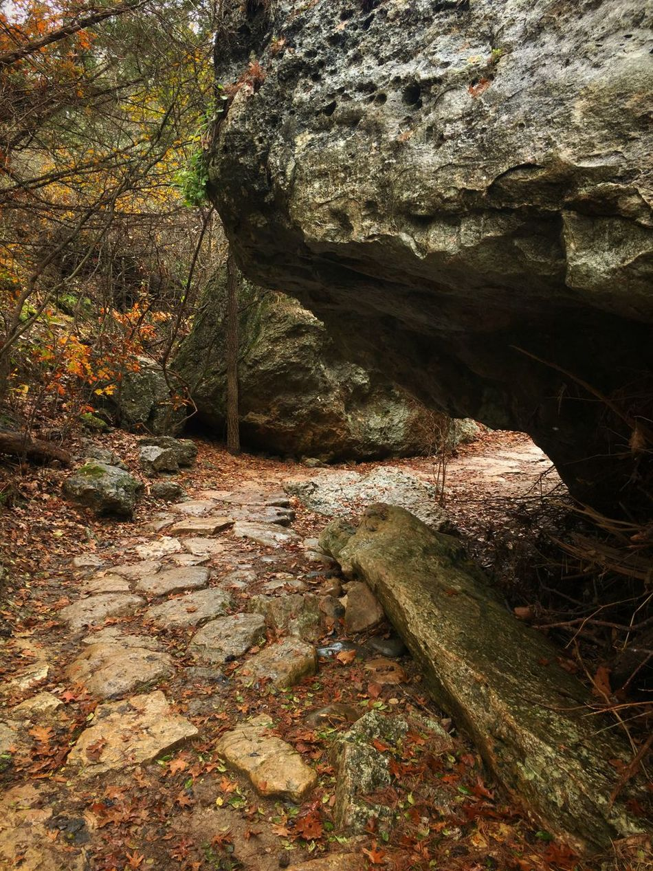 Hamilton Pool trail, Overcast IPSWeather Weather Iphonephotography IPhone 6s Plus Texas Snapseed Procamera8 EyeEm Nature Lover
