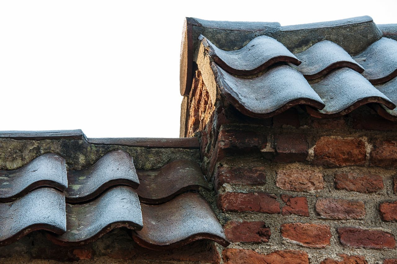- Frosty roof tiles on a brick wall - Low Angle View Built Structure Building Exterior Roof Tile Rooftop Close-up Day Sky Frost Frosty Tiles Weather Cold Freezing Netherlands Nikon Nikonphotography