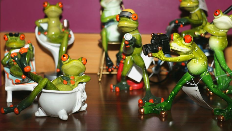 Frog Pinup Photography Is My Escape From Reality! Photo Frogs Frog Perspective Photography Themes Camerafun Camerafun Photo Frog Indoors  No People Figurine