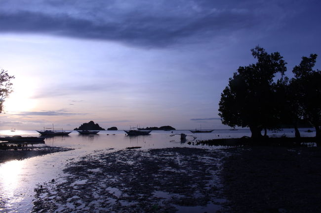 Boats⛵️ Dawn Islas De Gigantes Light And Shadow Mangroves Outdoors Sillouettes Trees