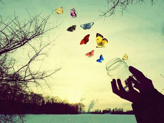 ...özgürlük..
