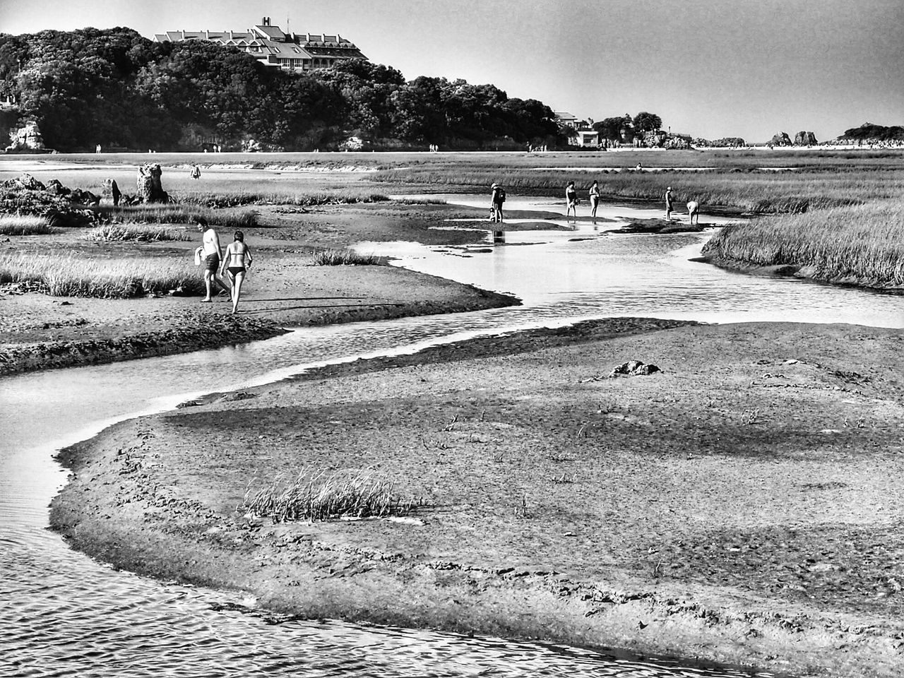 Marshes - Isla, Cantabria. Enjoying Life EyeEm Best Shots - Nature AMPt_community NEM Submissions Streemzoofamily Tadaa Community Sea_collection Weekend Activities Vscocam Outdoors EyeEm Best Shots - Black + White Blackandwhite Bnw_collection Bnw Photography