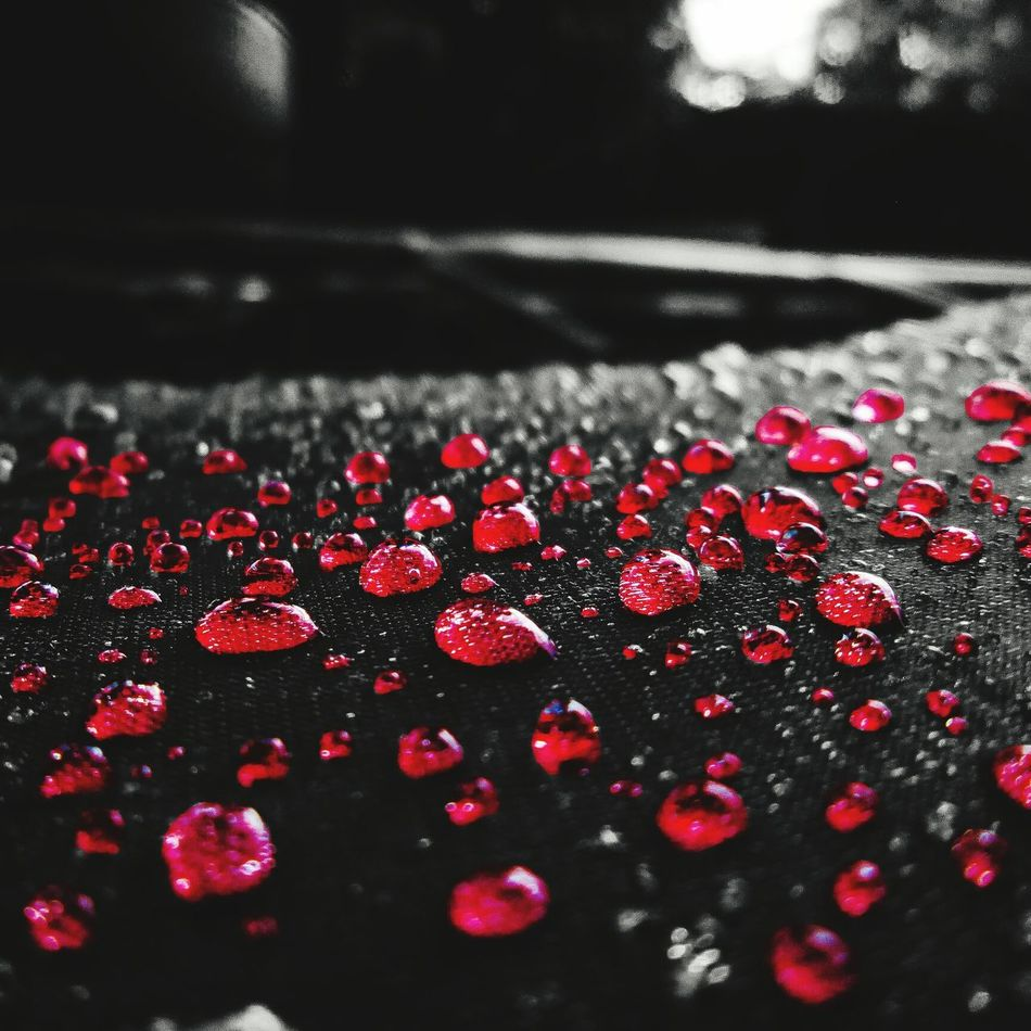 Split_color Bnw Bnw_society Red Rain