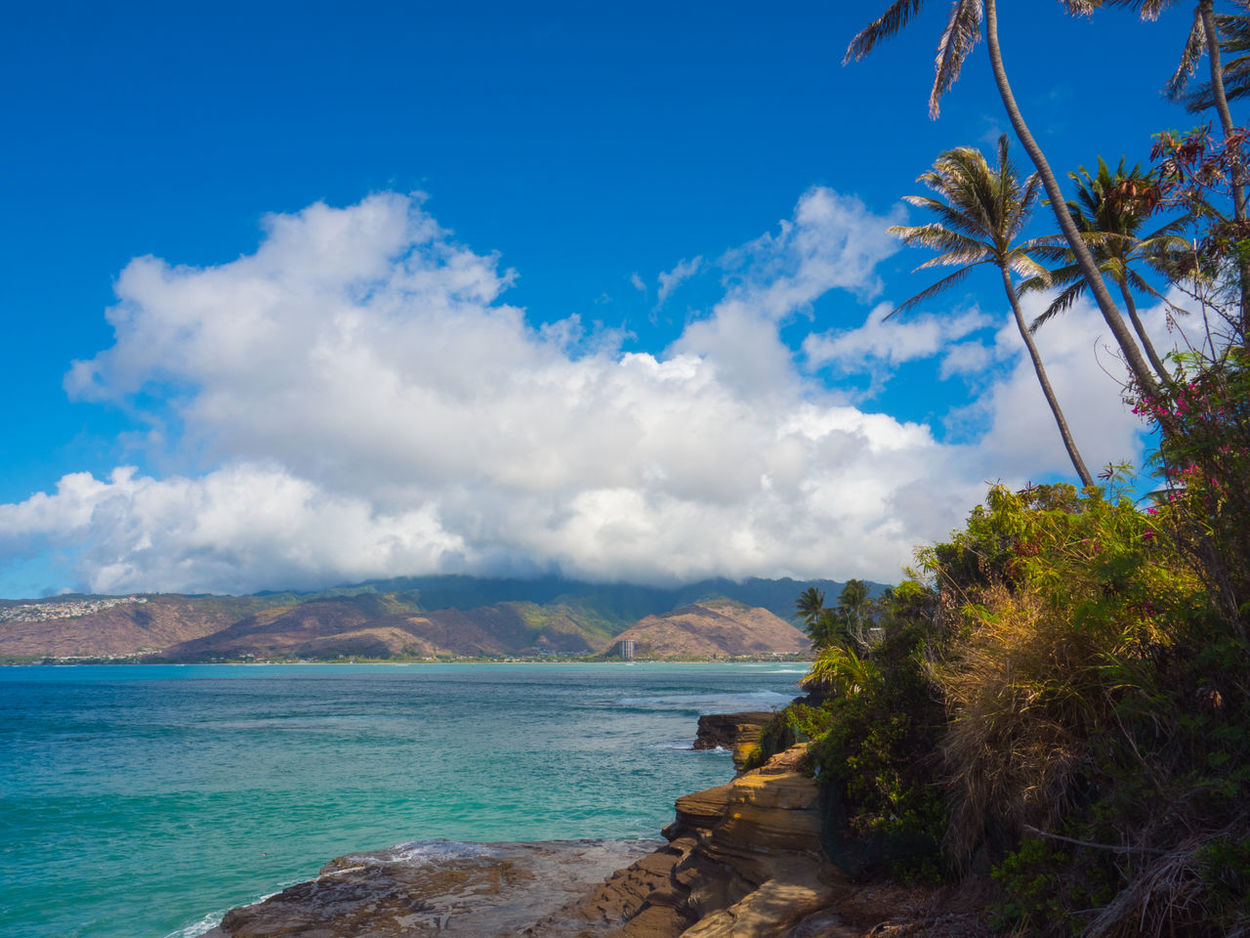 China Walls Hawaii Oahu, Hawaii Beach Beauty In Nature Blue Cloud - Sky Day Horizon Over Water Nature No People Outdoors Scenics Sea Sky Tranquil Scene Tranquility Tree Water