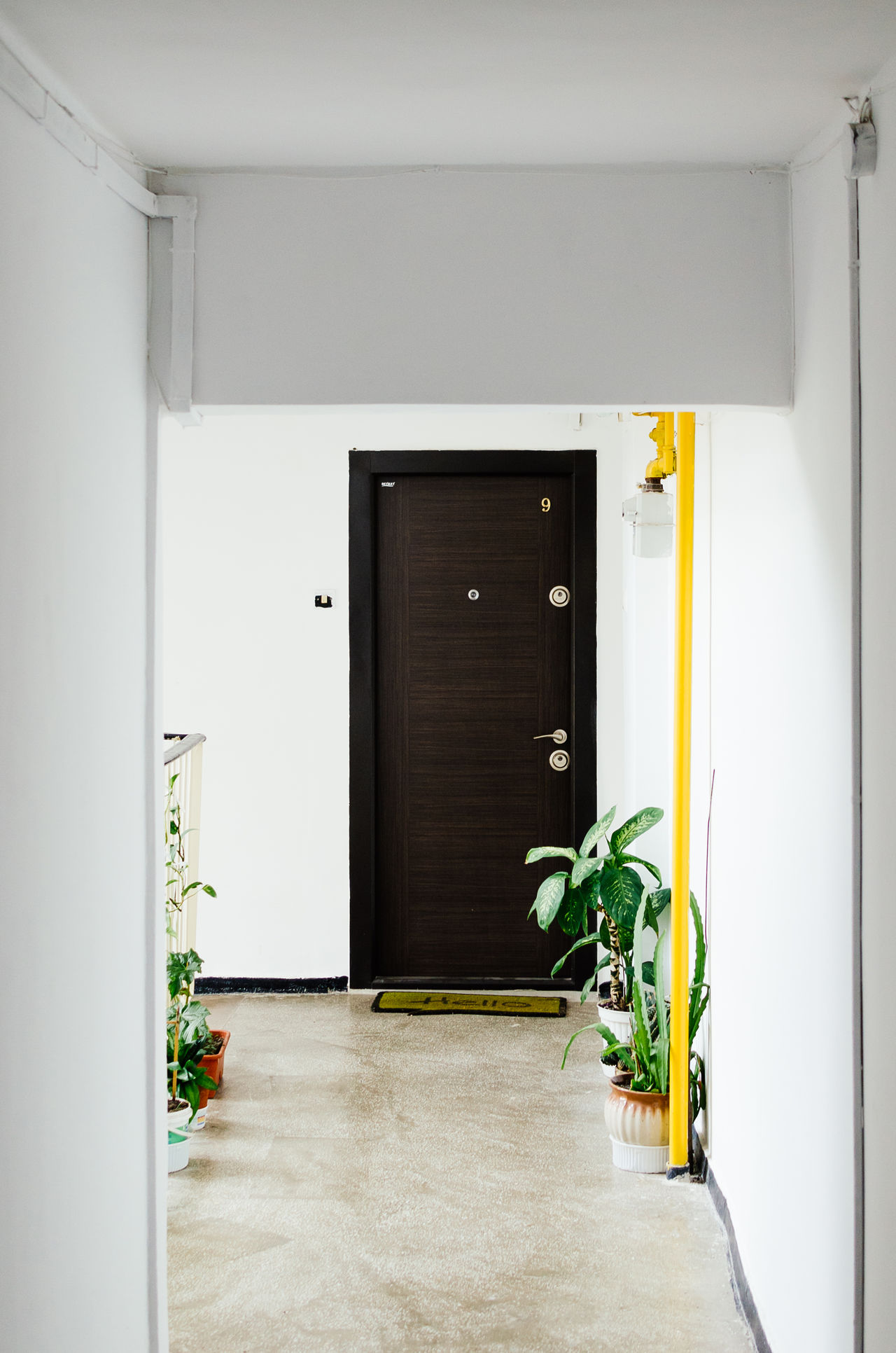 Welcome home Apartment Architecture Built Structure Day Door Flower Indoors  Leaf No People Outdoors Plant Plants Shutter Sliding Door Whitewashed Window