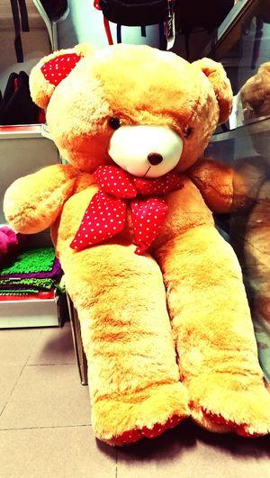 Teddy Bear Hye There Cute original First Eyeem Photo