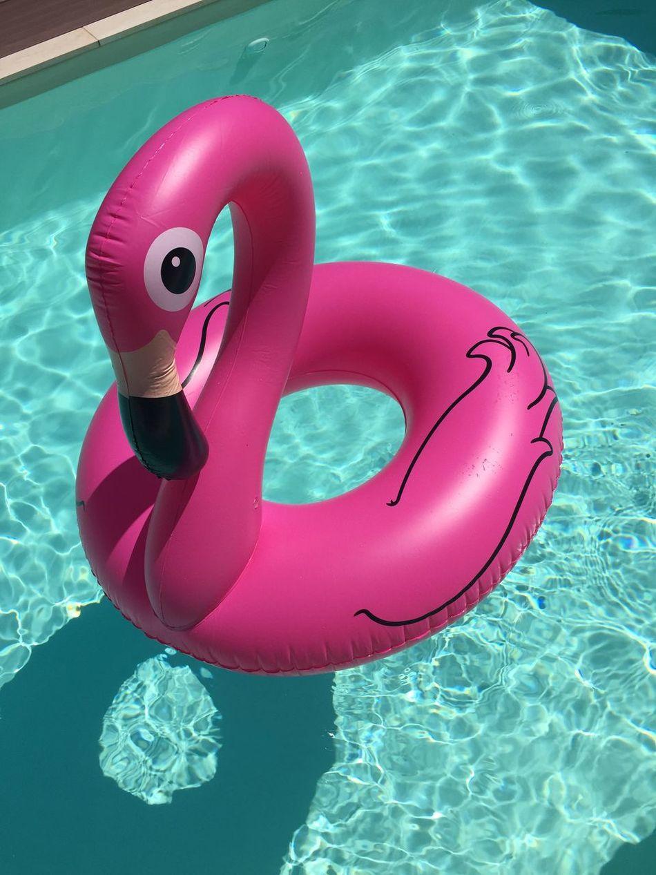 Bouée Flamant Rose Été Piscine Eau Flamingo Millennial Pink