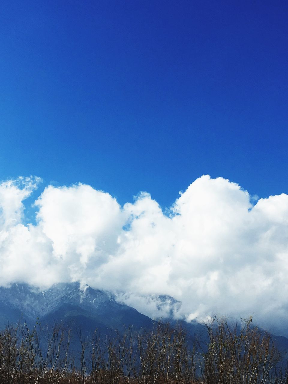 nature, blue, scenics, beauty in nature, tranquility, tranquil scene, sky, day, outdoors, mountain, no people, cloud - sky, low angle view, tree, landscape