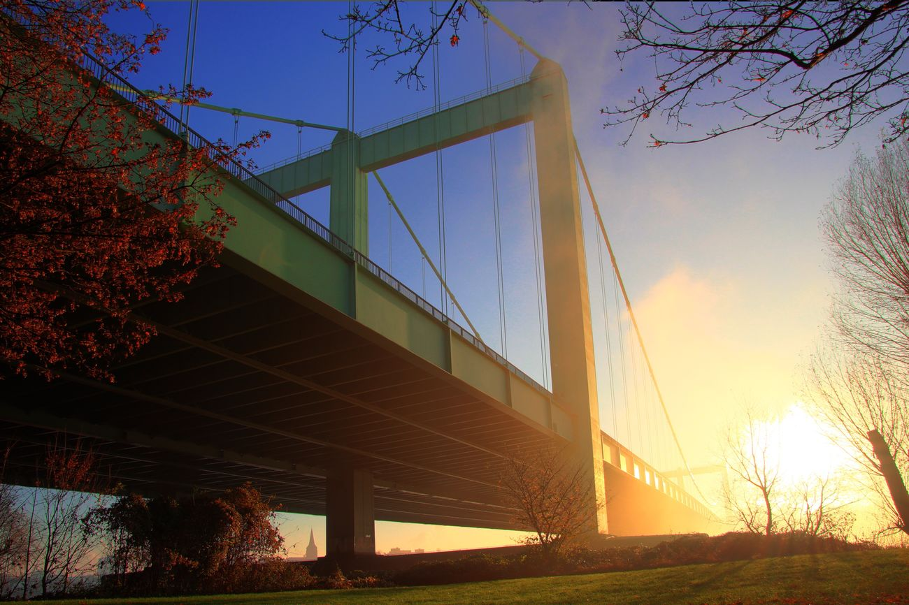Sun Sunny Sunny Day Fog Foggy Autumn Autumn Colors Landscape Nature Architecture Built Structure Tree Sky Sunlight Connection Outdoors Low Angle View Sunset Building Exterior Bridge - Man Made Structure No People Nature Day Suspension Bridge