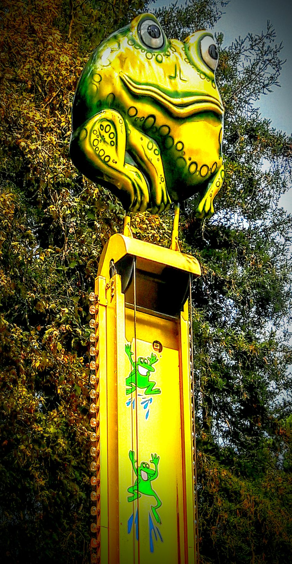 A frog in the woods... Enjoying Life Check This Out Eyem Best Shots EyeEm Gallery Eyeemphotography Color Photography Outdoor Photography Children Amusement Parks Cheese! Kiddy Ride Fun In The Sun ☀ Open Edit For Everyone Discovering Lots To See Froggy
