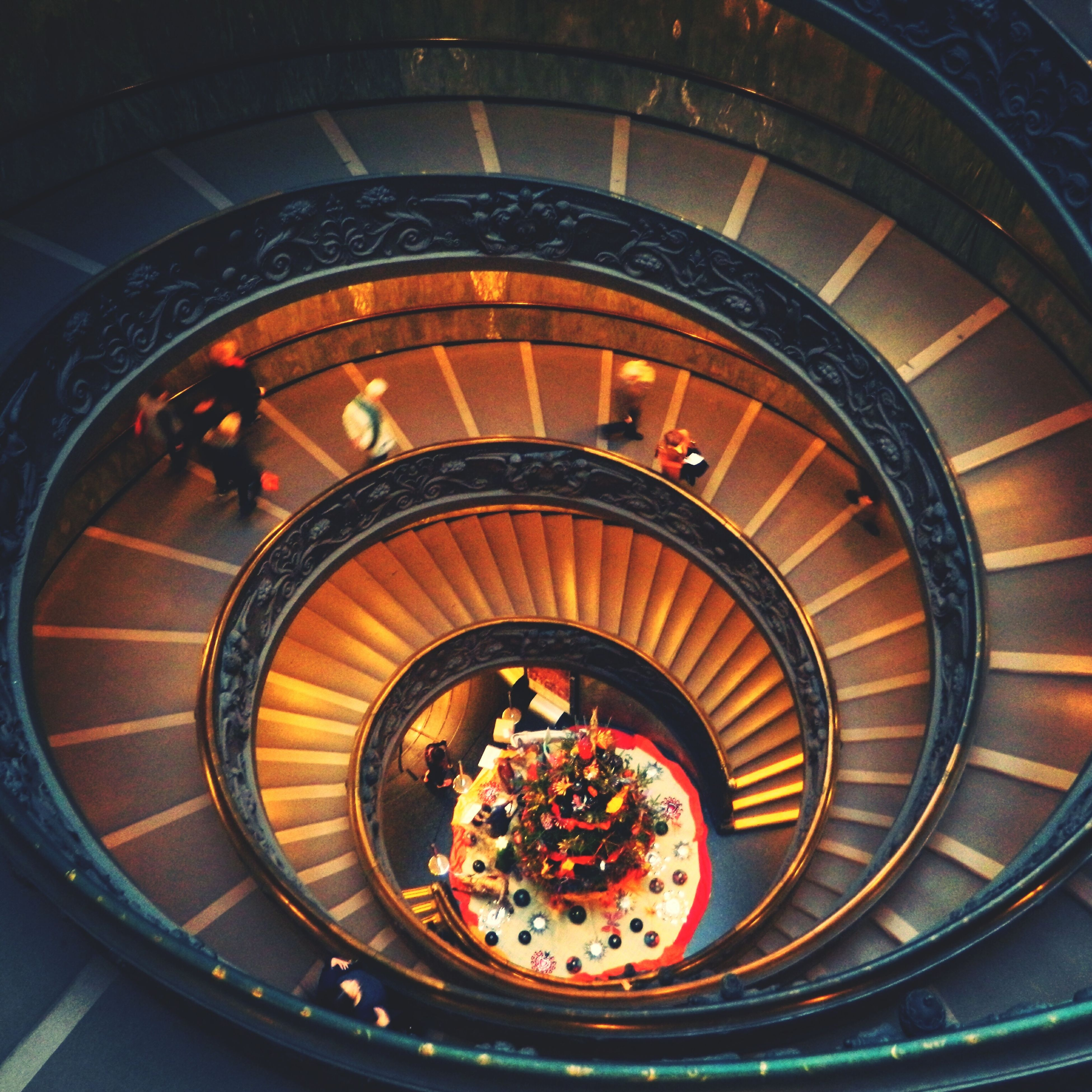 indoors, high angle view, steps, steps and staircases, staircase, railing, spiral, architecture, directly above, built structure, spiral staircase, pattern, no people, elevated view, flower, freshness, circle, day, design, close-up