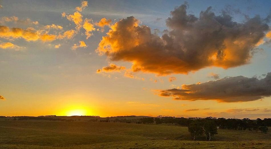 Loving the orange in tonight's sunset! Portland, NSW 05/04/2016🌄 Amazing_australia Sky_brilliance Skyddiction Splendid_outskirts Sky_central Sky_captures Exclusive_sky Trb_sunsetsfx Loves_australia Skysnappers Tv_clouds Myskynow