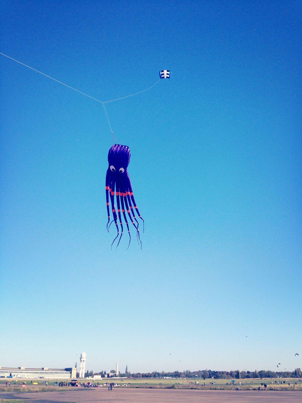 The kraken flying high Kite Blue Sky