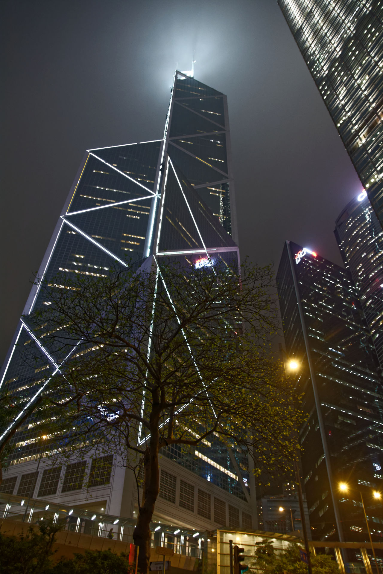 How small is the world under the skylines. #building #hongkong #lights #sky #Skyline #streetphotography #tree Architecture Built Structure Capital Cities  City City Life Low Angle View Modern Night Outdoors Tall - High Travel Destinations