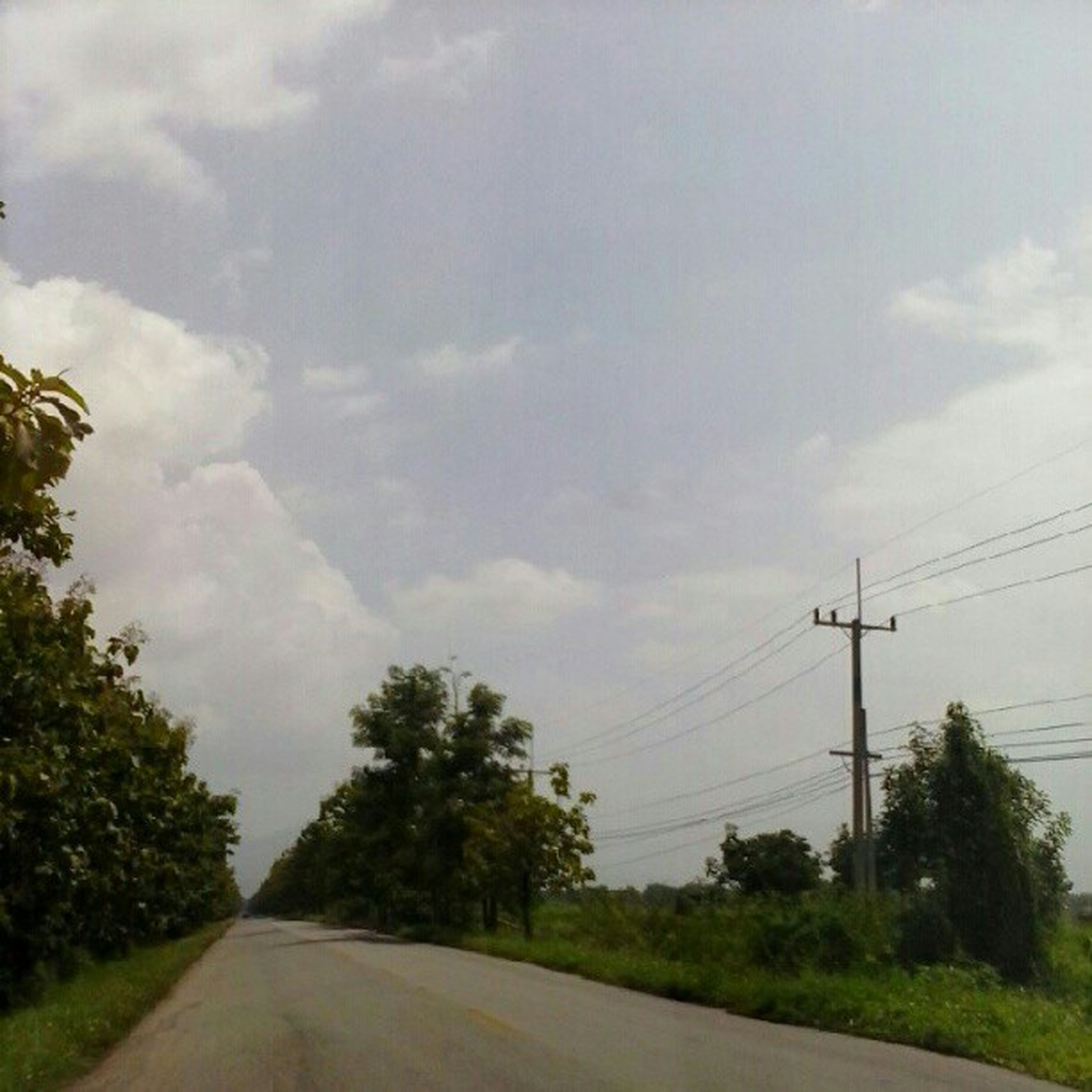 power line, electricity pylon, transportation, road, sky, the way forward, tree, connection, electricity, power supply, cable, diminishing perspective, country road, vanishing point, cloud - sky, power cable, road marking, nature, landscape, street