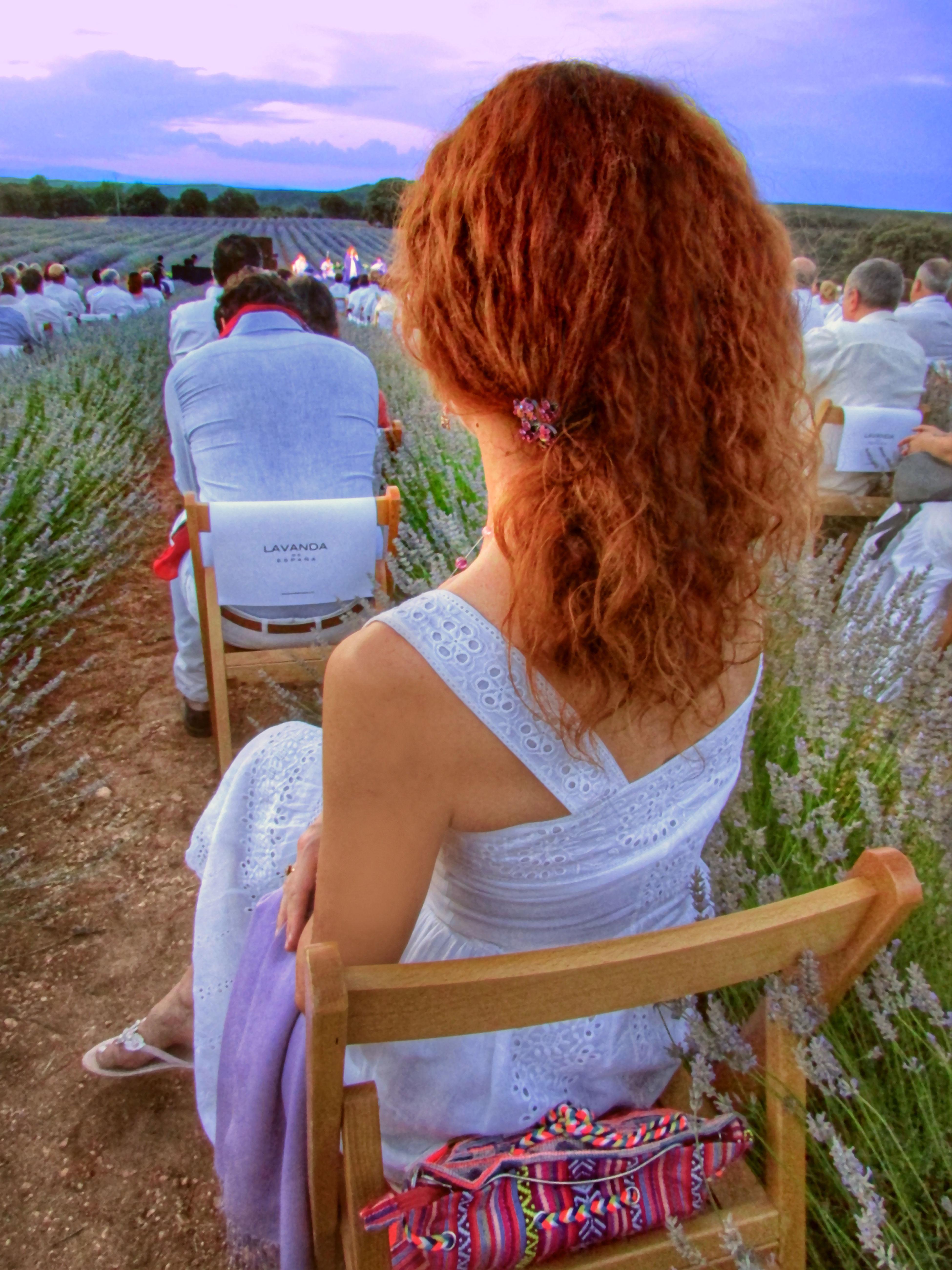 Festival de la Lavanda Captured Moment That's Me Beautiful Perspectives