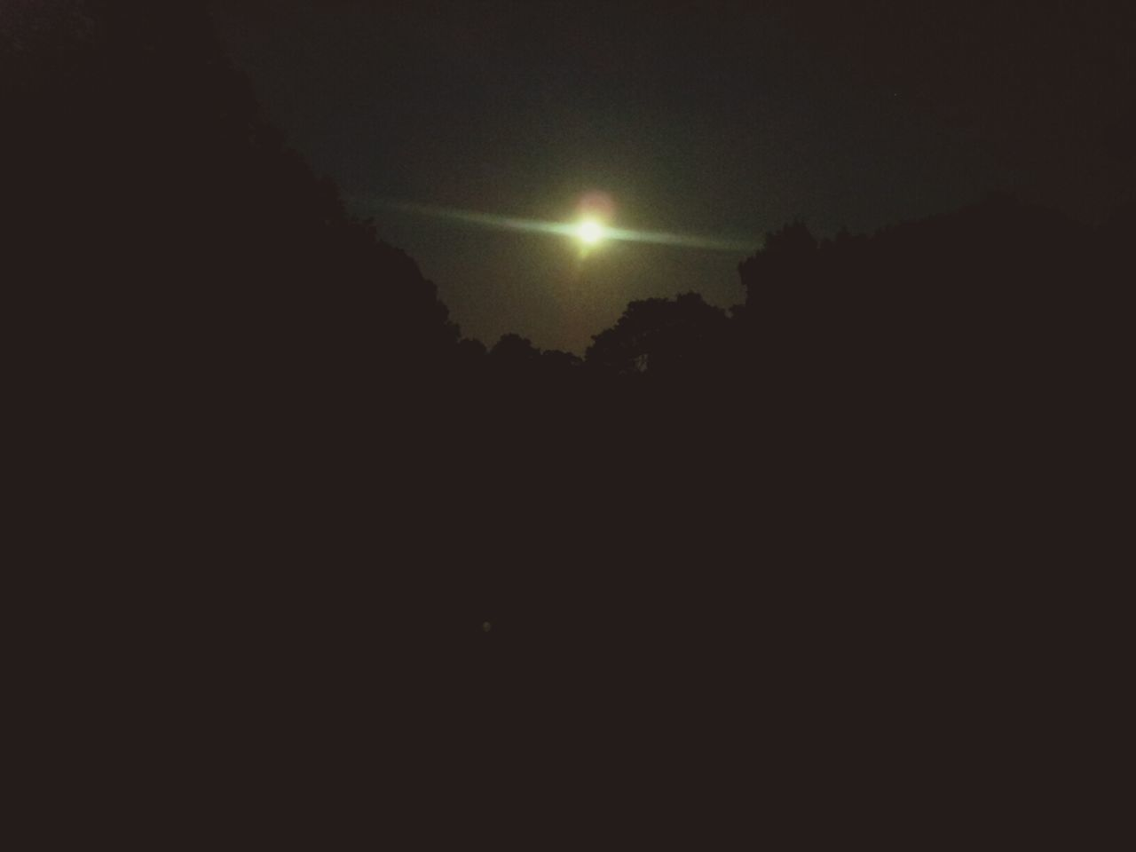 Moonlight jogging