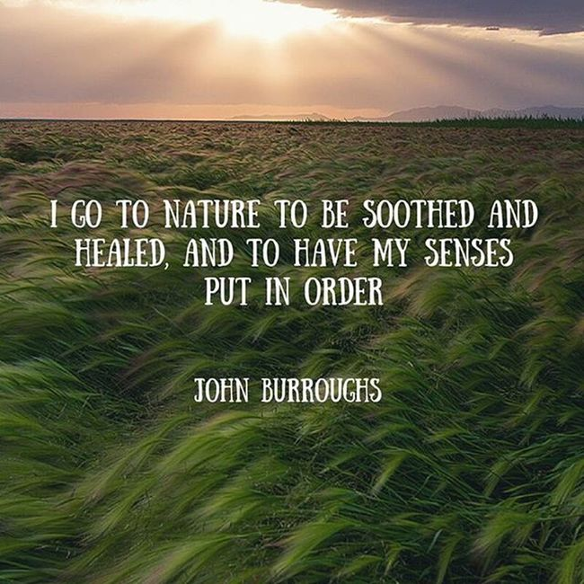 I need a vacation that involves mother nature. Much like this quote. Do you ever feel like you need to get away from civilization to unwind and get back to being yourself? Nature Ineedavacation Photography Mysoul  Onewithnature