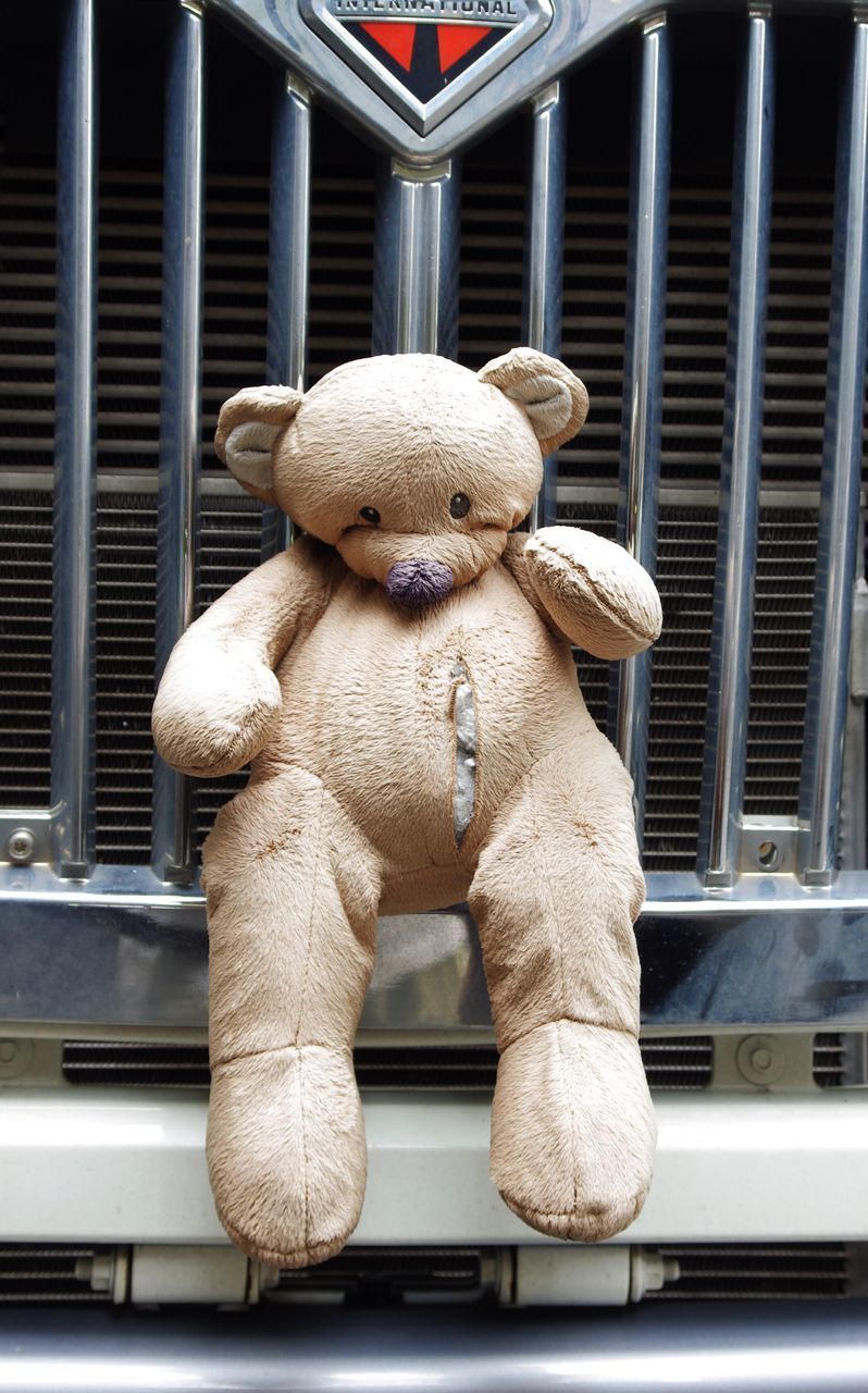 toy, stuffed toy, teddy bear, no people, day, outdoors, architecture, security bar, panda - animal, close-up