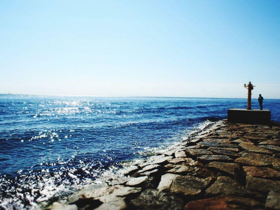 Awaji Awajishima Sea Sun Sunny Sunny Day Trip Summer Beautiful Nature