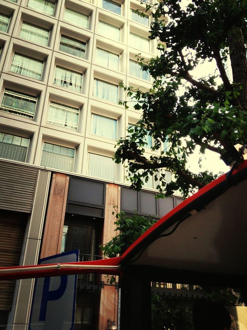 SKY BUS TOUR♪ IPhoneography Landscape Travel
