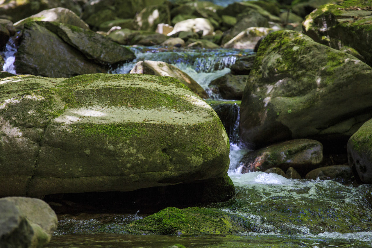 rock - object, water, no people, green color, beauty in nature, nature, outdoors, river, waterfall, day, close-up, freshness
