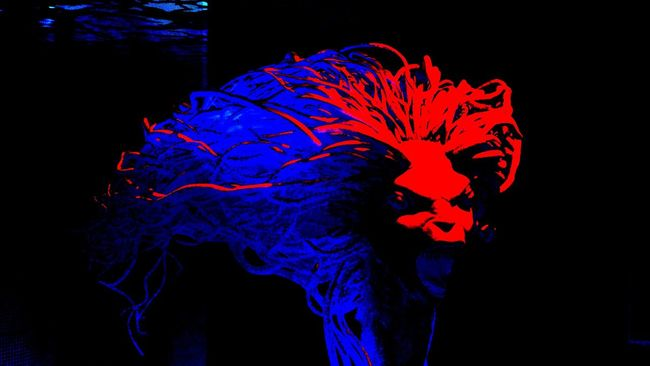 Abstract Black Black Background Blue Creature Creepy Dark Harrypotter Monster Multi Colored Neon Colored Night Red Scary
