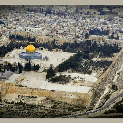 لو استطعتُ نشرتُ الحزنَ والألما على فِلسْطينَ مسودّاً لها علما ساءت نهاريَّ يقظاناً فجائعُها وسئن ليليَ إذ صُوِّرْنَ لي حلما رمتُ السكوتَ حداداً يوم مَصْرَعِها فلو تُرِكتُ وشاني ما فتحت فم أكلما عصفت بالشعب عاصفة ٌهوجاءُ نستصرخُ القرطاسَ والقلما ؟ هل أنقَذ الشام كُتابٌ بما كتبوا أو شاعرٌ صانَ بغداداً بما نظما شعر محمد_الجواهري فلسطين غزه أدب_القضيةالفلسطينية أدب إقتباس ماذا_تقتبس سوريا العراق الشام