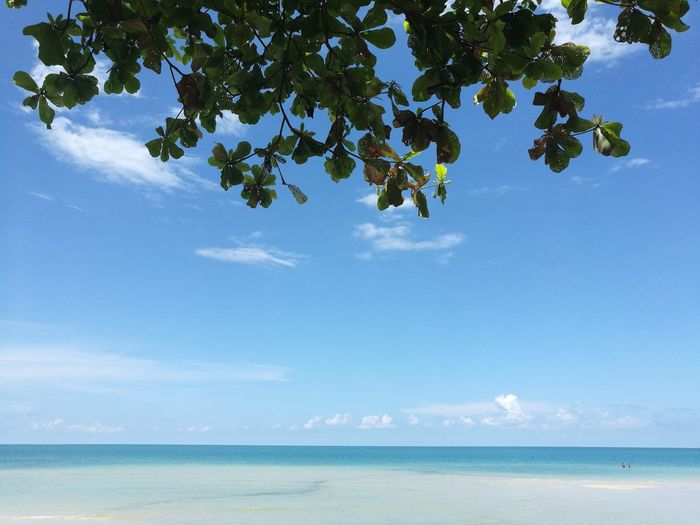 Sea landscape Sea Sky Nature Blue Travel Koh Chang Thailand Slow Life Outdoors Landscape Landscape Photography Beach