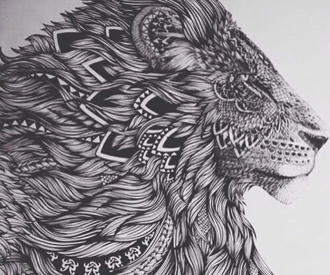 I need this on my arm. Tattoo Lion Drawing Photography