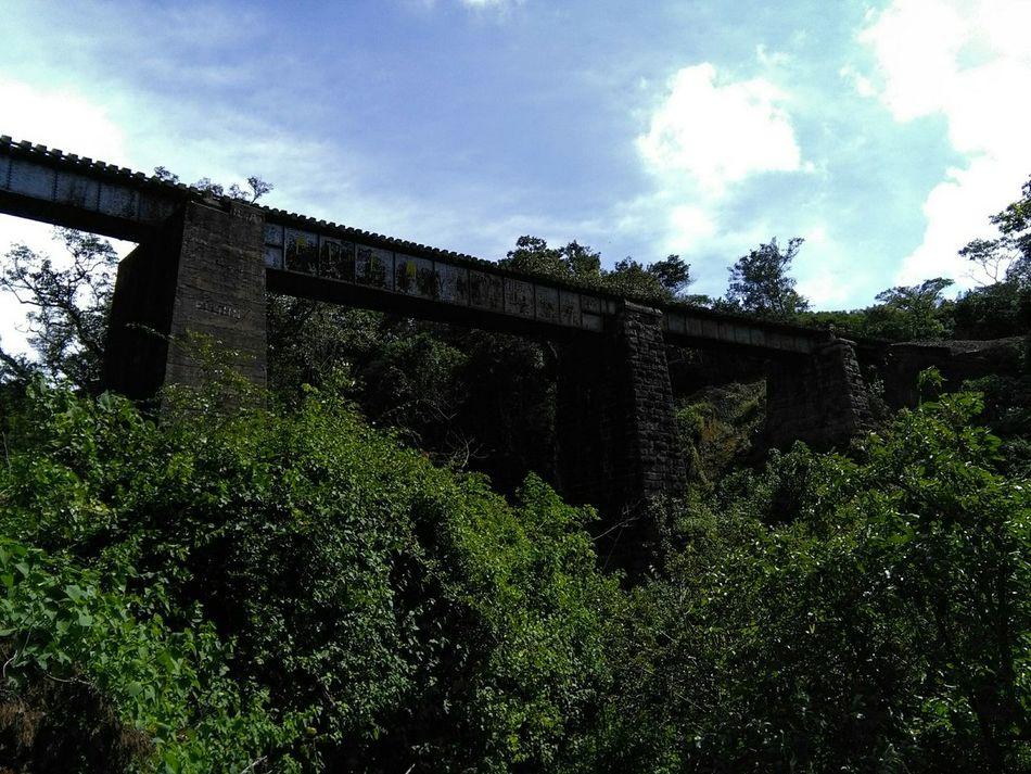 puente fierro...Cartago-Costa Rica Puente Bridge Mirar Arriba Look Up And Thrive Trainphotography Learn & Shoot: Leading Lines Paisaje Natural Look Antique