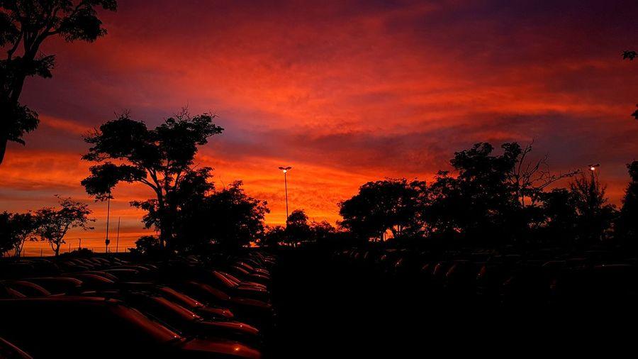 Sunset Silhouette Sky No People