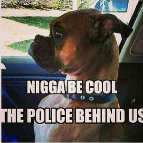 Lmao This Reminds me how I used to be When I used to get high ! LMAO NiggasBelike Becool ThisRemindsMeOfMe