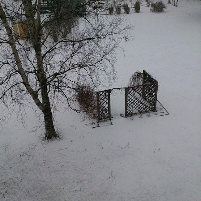 Under jul och nyårshelgen kom ingen snö. Nu verkar all snö komma.  äntligen Vinter Detvarp åtiden