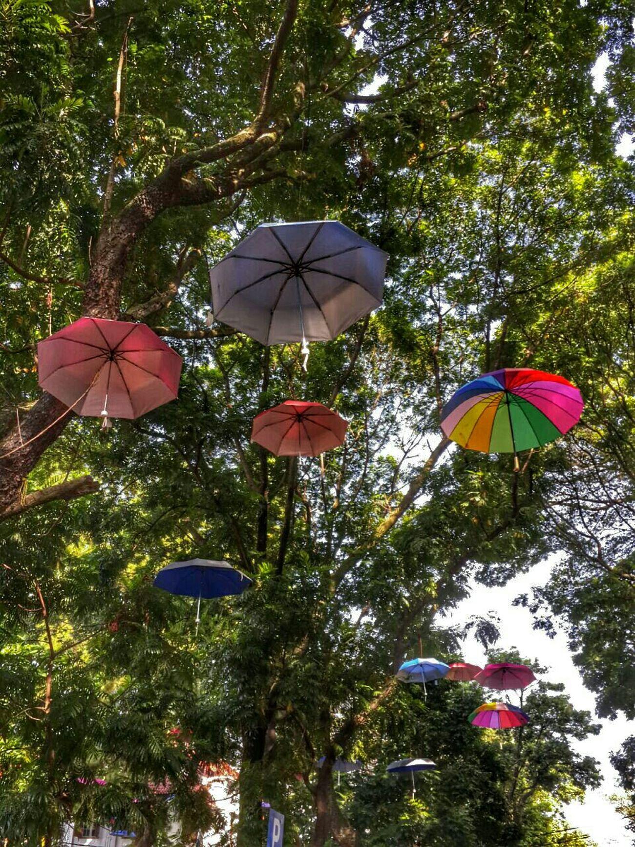 Umbrella Festival Bogor, Indonesia