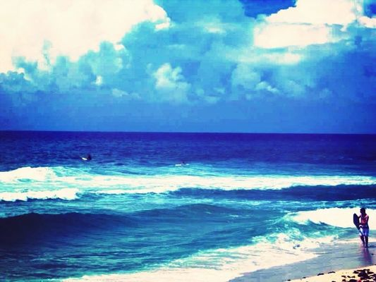 Gulf Shores by Nikole Williamson