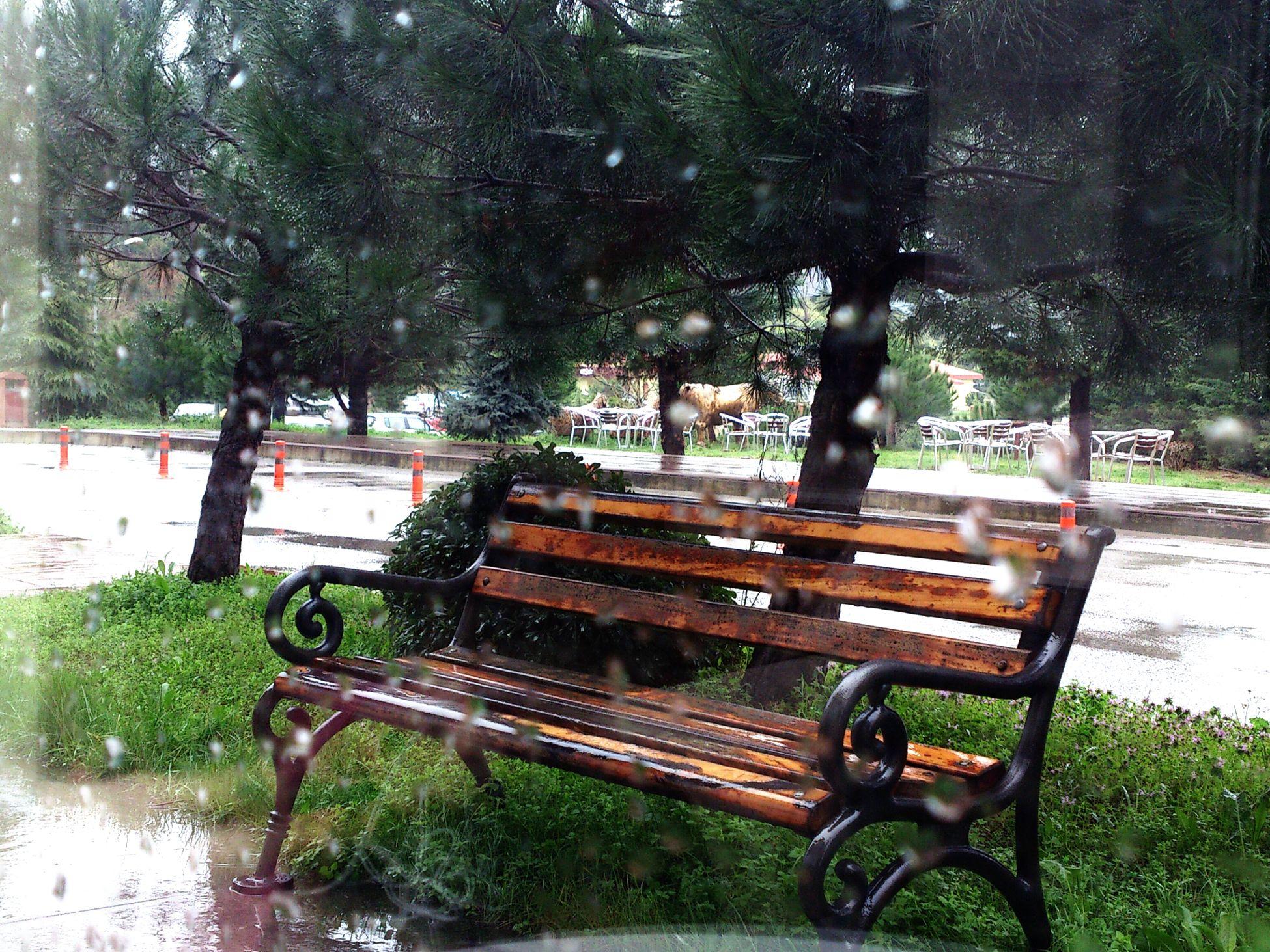 Nature Rain Winter XPERIA