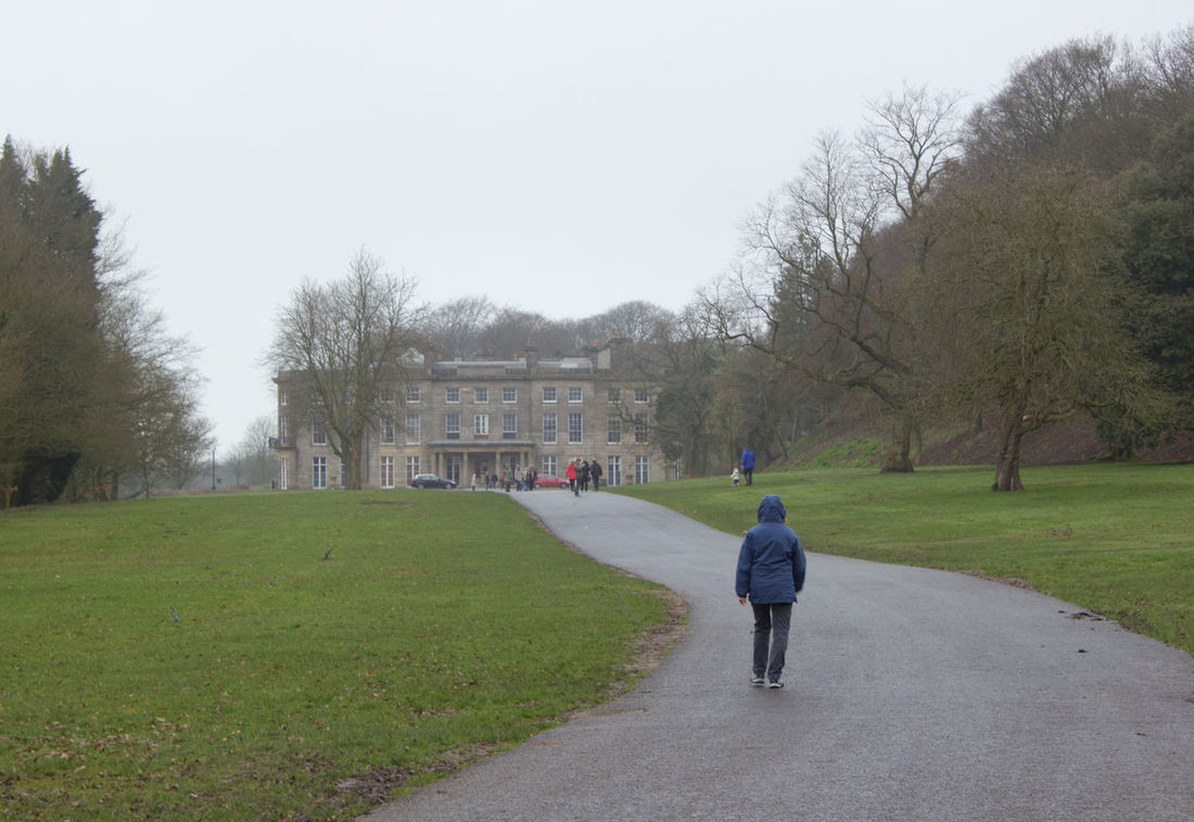 Rear View Full Length Tree People Walking Adult Adults Only Grass Women One Person One Woman Only Outdoors Day Nature Haigh Hall Hall Real People