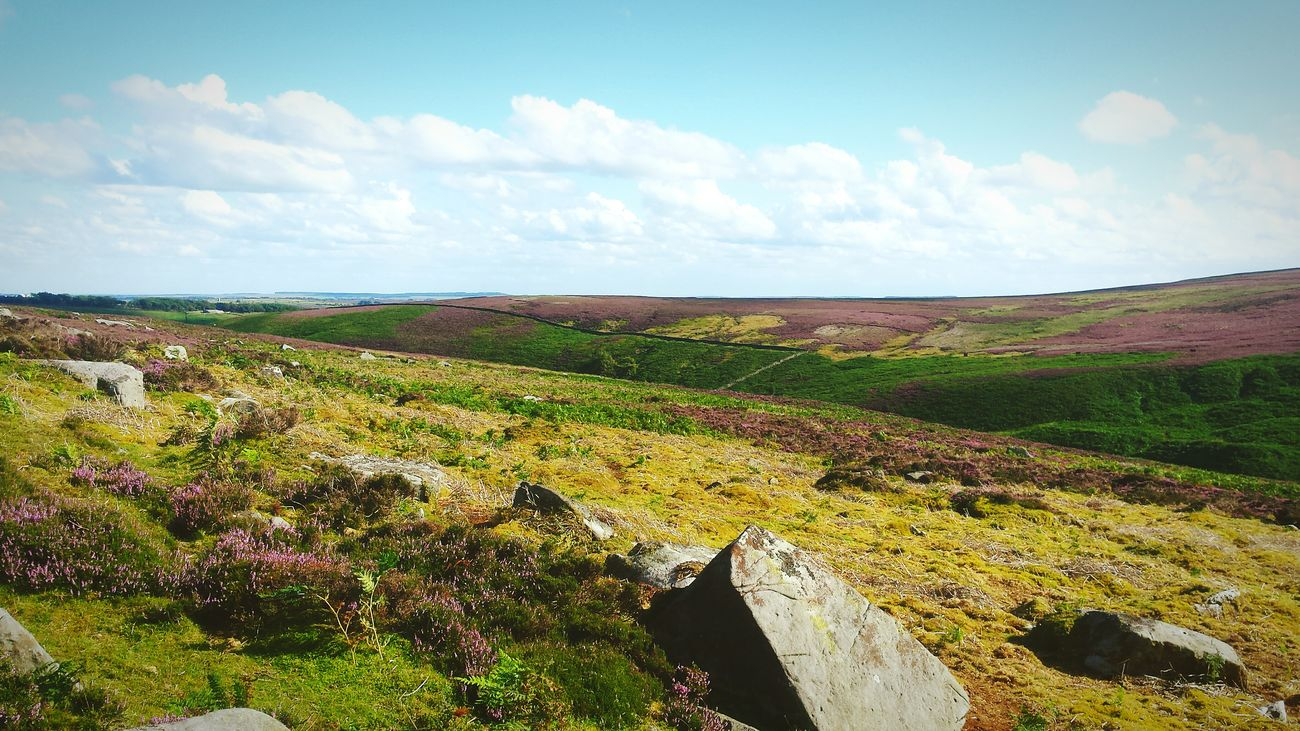 Dales Moors Yorkshire Dales Yorkshire Landscape