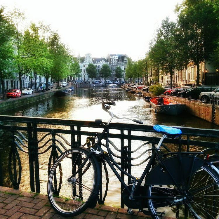 I 💜 Amsterdam Amsterdam Amsterdamcity Amsterdam Canal Iloveamsterdam Amsterdamthroughmycamera Amsterdamcanal I Love Amsterdam Bikes Of Amsterdam In Amsterdam I Amsterdam
