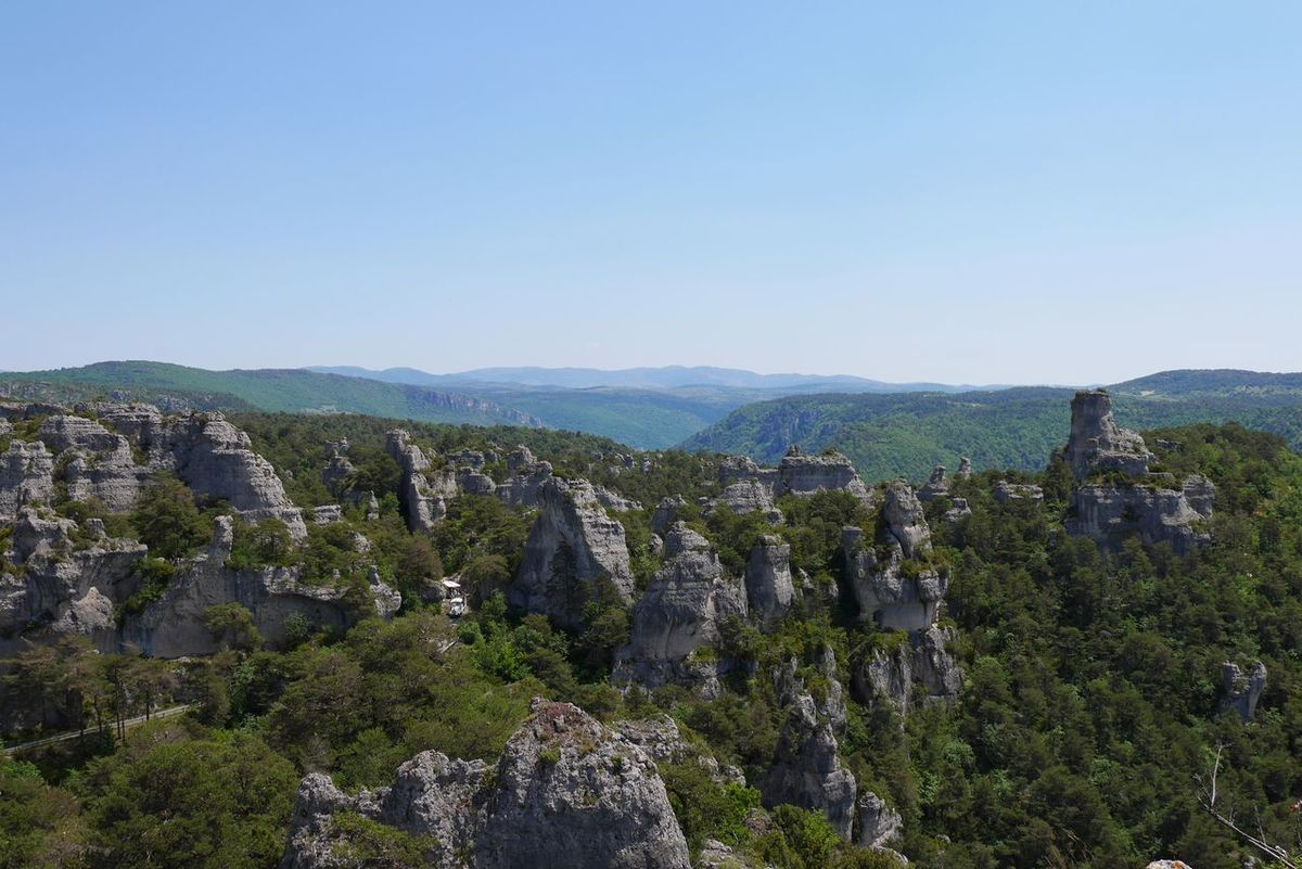 Montpellier Le Vieux - Landscape Tree Outdoors Sky Day Nature Rock Formation Rock - Object Hiking Travel Destinations Occitanie Nature_collection Natural Beauty Naturelovers Nature Photography Tourism Aveyron Beauty In Nature Growth Tree Nature Pinaceae Pine Tree Springtime
