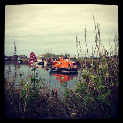 Project 365 at Howth Harbour by Caroline Killeen